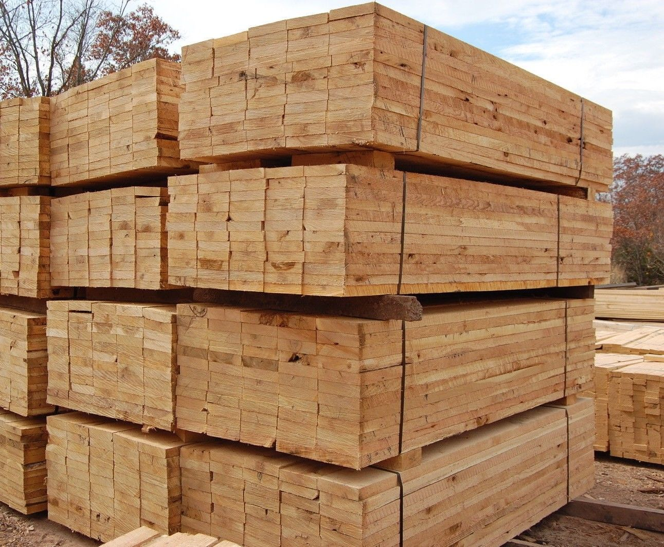 timber Carcassing